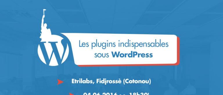 Article : #wpmeetupbj #1 : Le 1er meetup WordPress à Cotonou est pour le 4 juin